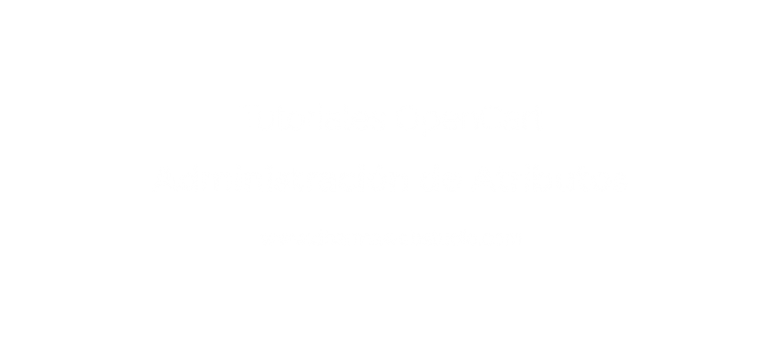 ¿How to administer the attributes in OpenCart?