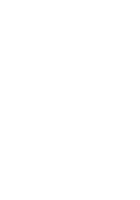 Mailgun Email and Newsletter Protocol